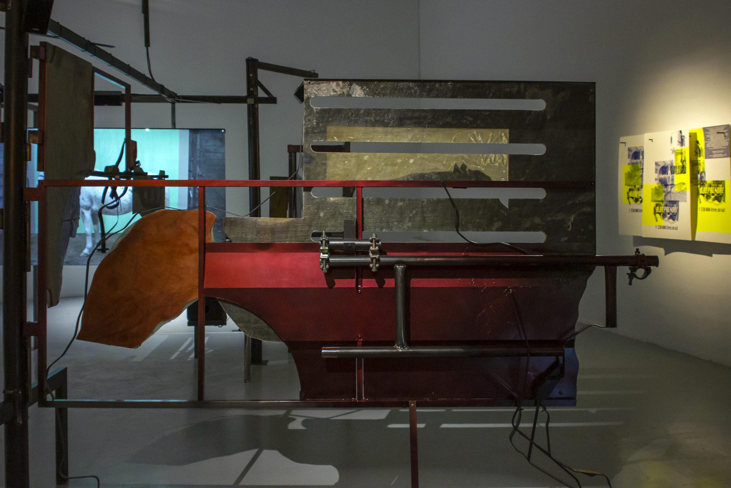 """Maquignon-installation-vidéo- Collection FRAC Poitou Charentes - vue exposition """"Jorn de Fièra"""" RURART - credit photo Vincent Allain"""